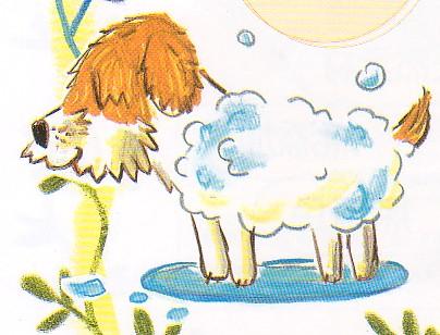 温泉と酵素 すすぎいらずの犬用シャンプー 犬用入浴剤 天然酵素ニコエコペット入浴剤 - ニコエコ通販専門店・おっ ...